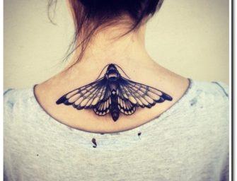 Mes papillons et moi…